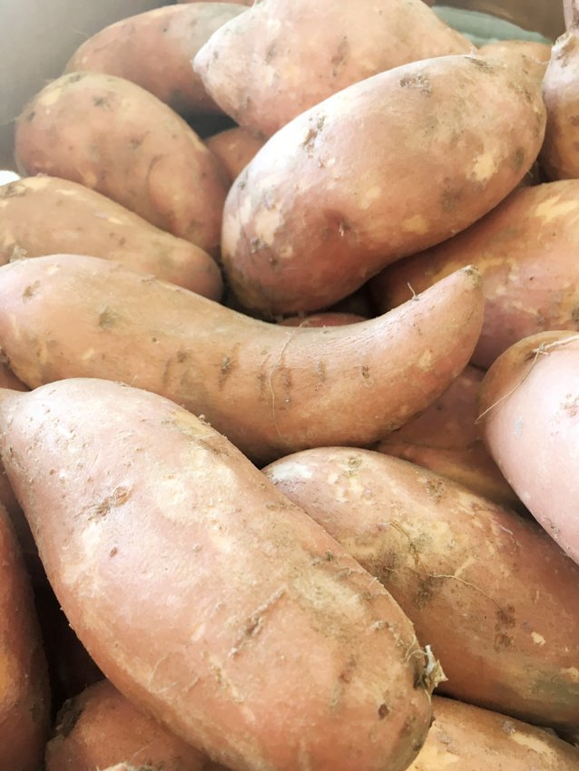 Sweet potatoes are seen here at the Farm Credit Farmers Market.