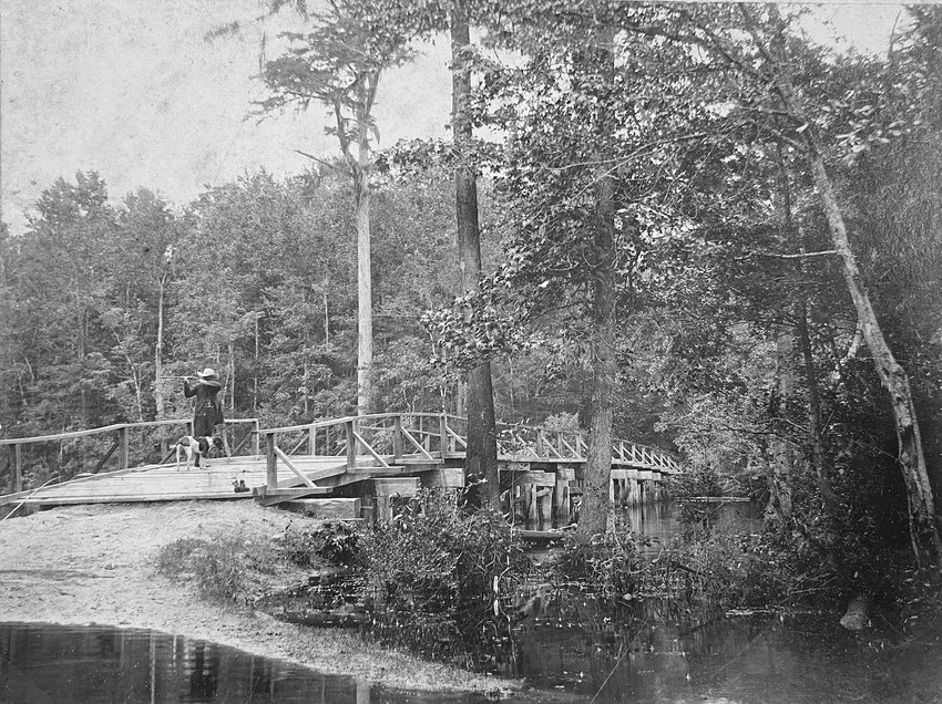 A man takes a shot from the Stevens Mill Bridge outside Goldsboro in the early 1900s. The man is accompanied by his dog.