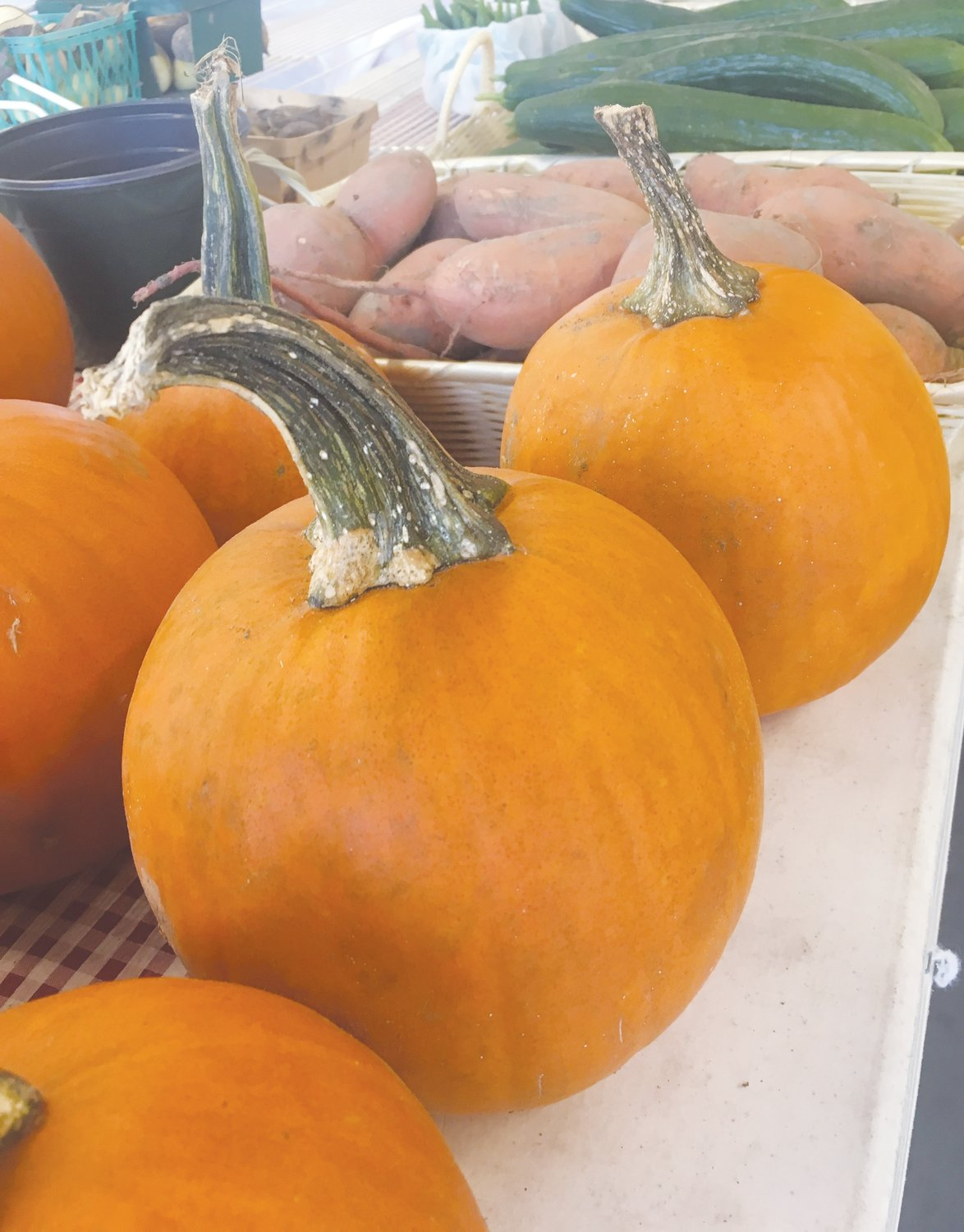 Pumpkins available at the Farm Credit Farmers Market.