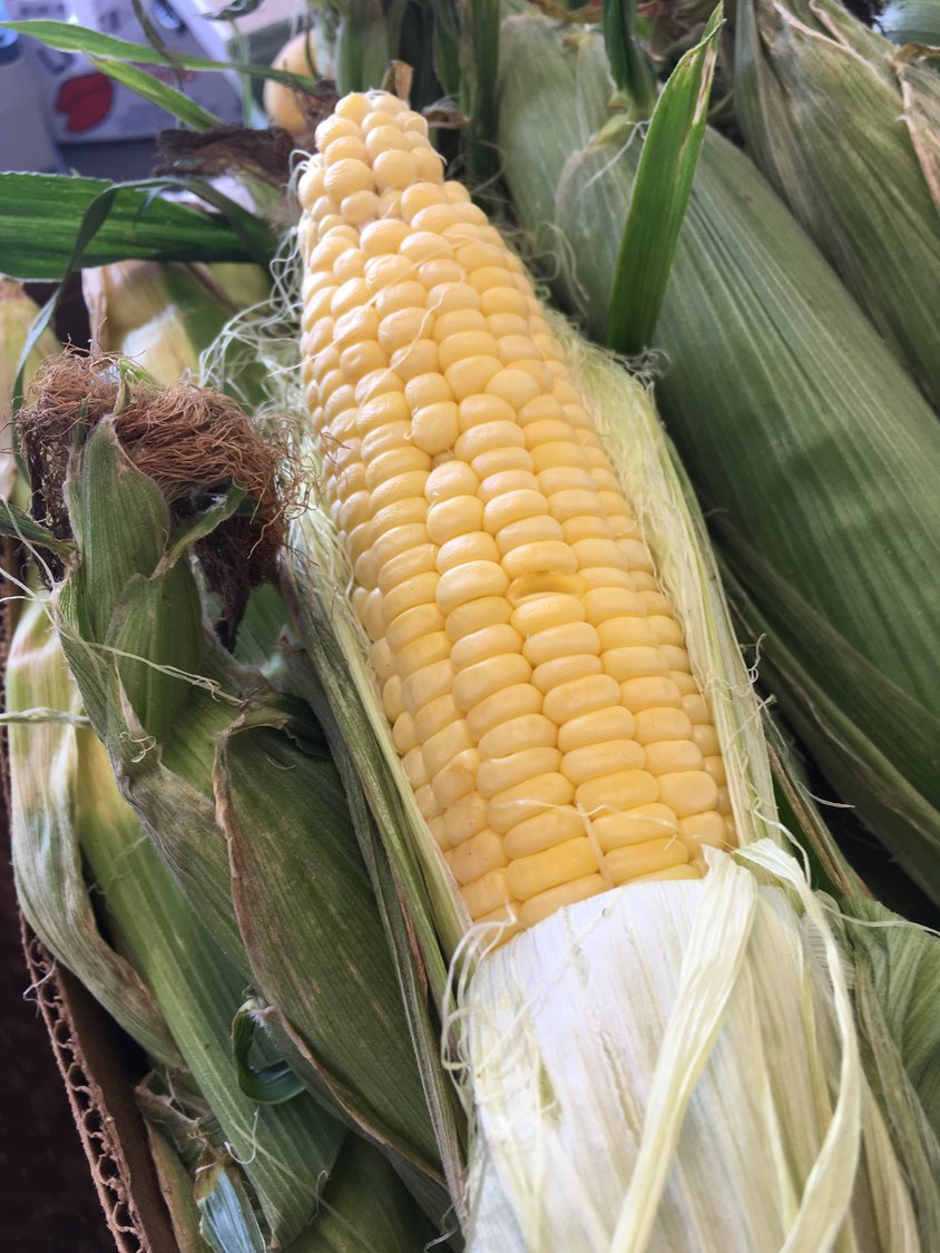 An ear of sweet corn is pictured here at the Farm Credit Farmers Market in 2019.