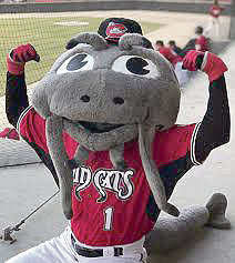 Muddy the Mudcat
