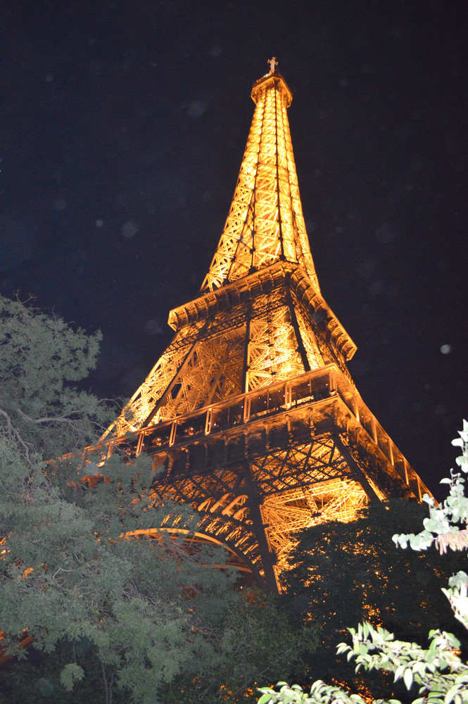 The icon of Paris, the Eiffel Tower, glows from its perch on Champ de Mars.