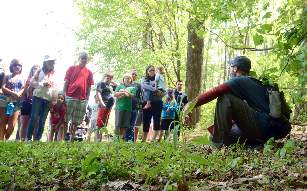 Dan Twyman talks about wildflowers during the Wildflower Walk at Cane Creek Park.