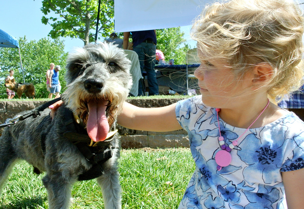 Four-year-old Ruby Jane Whittenburg rests for a moment with Kash, a miniature schnauzer, at this year's Dogapalooza. Hundreds of visitors dropped by the event Saturday to enjoy the day with their canine friends. See more photos on page A8.