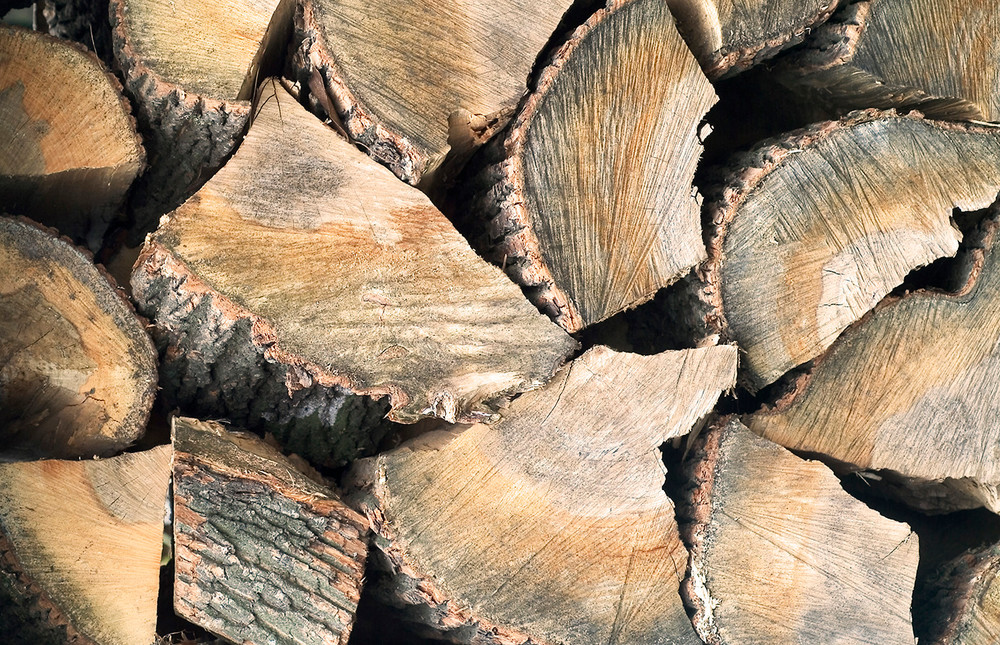 Requirements for heat-treated firewood in state and national parks in Tennessee are turning into a money-making opportunity. .A free workshop on May 25 at the Leslie Towns Center will explain how people can cash in. The workshop is being put on by government officials and the Tennessee Nature Conservancy.