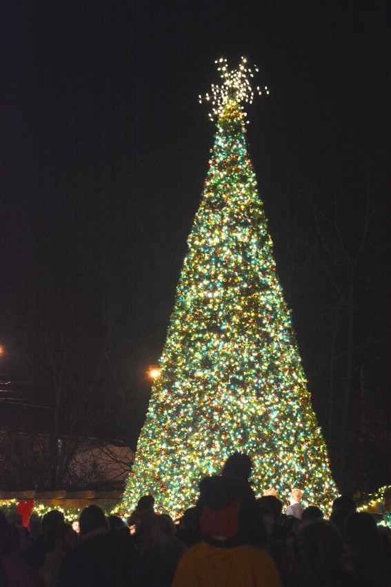 The tree in Dogwood Park after it was lit up during the ceremony Sunday evening.