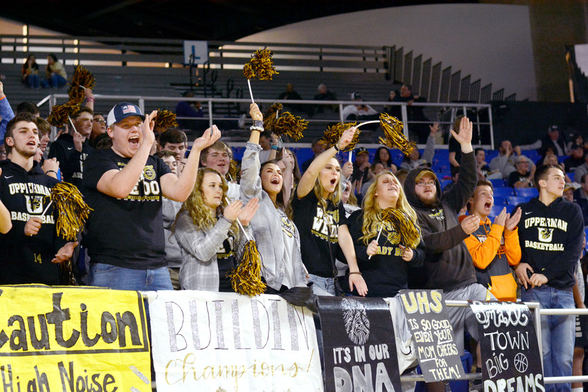 The Bee Nation was out in full force in Murfreesboro.