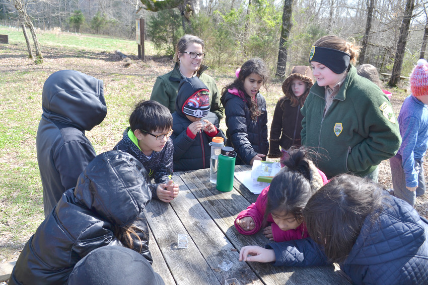Putnam County school students examine a variety of insects as part of the LEAPs spring break program this week at Cummins Falls State Park.
