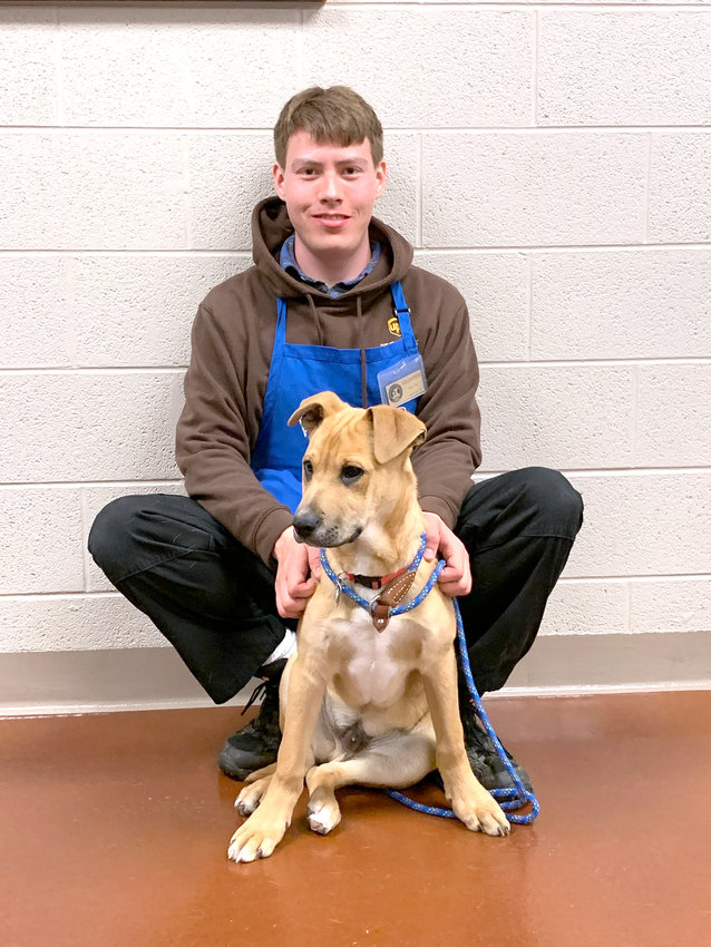 Cookeville/Putnam County Animal Shelter volunteer Logan Delk happily adopts Goliath, a three-month-old Great Dane/Shepherd mix pup at the animal shelter.