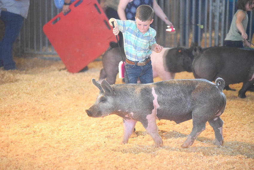 Baylor Bisbee showing his hog at the Putnam County Fair Novice Hog Show on Friday. Sunday's big event is the demolition derby at 6 p.m. Monday, it's Senior Day at the fair beginning at 9 a.m. The heavy equipment rodeo at 6:30 p.m.