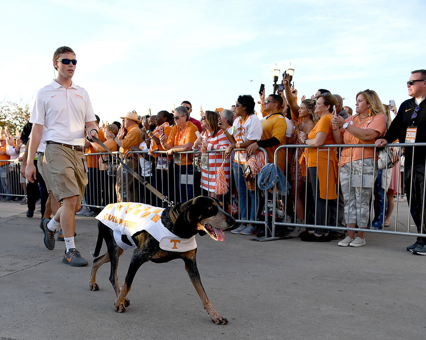 Tennessee Volunteers fans greet players and coaches as they arrive at TIAA Bank Field for the Gator Bowl NCAA football game against the Indiana Hoosiers Thursday, Jan. 2, 2020.