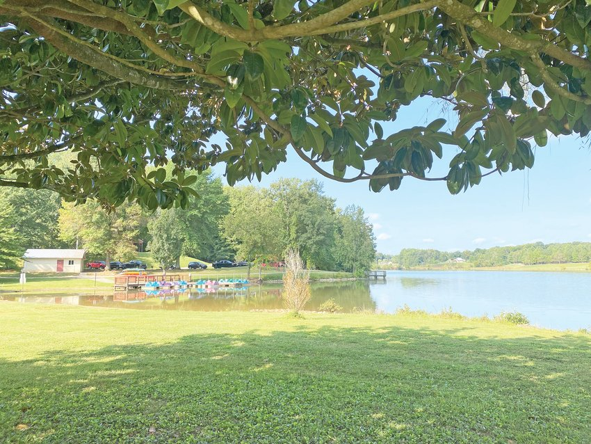 The Cookeville City Council is considering applying for a grant to improve Cane Creek Park.