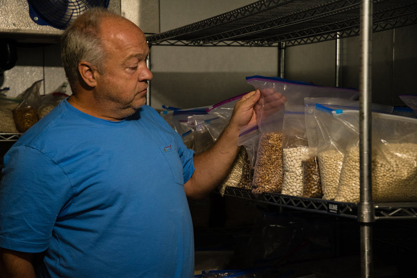 Michael Best, a professor of agricultural economics and director of the Sustainable Mountain Ag Center, shows some of the seeds that will be available at the annual seed swap on Saturday, Oct. 2.