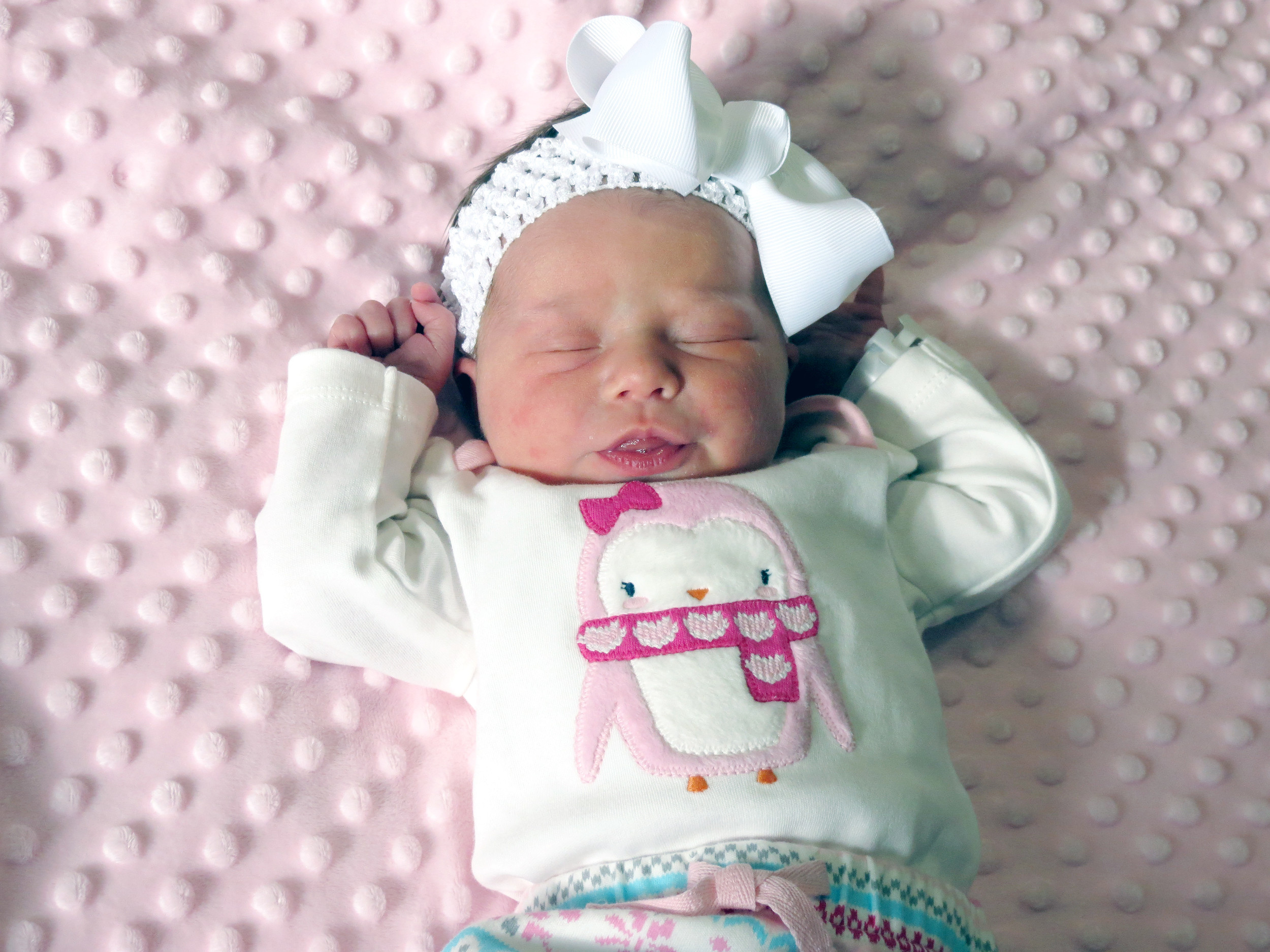 13a3364456f93 Cookeville Regional saw more girls born in 2016 | Herald Citizen